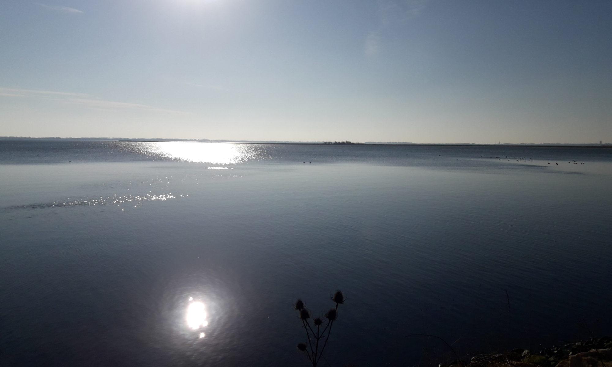 Sun shinning on the water