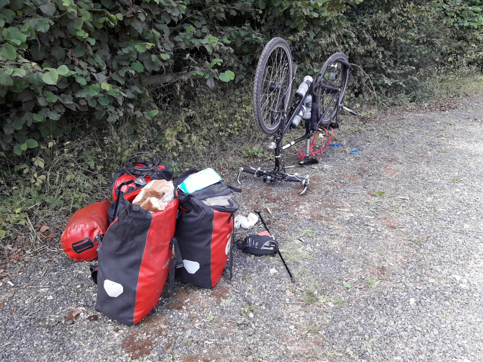 Bike and panniers