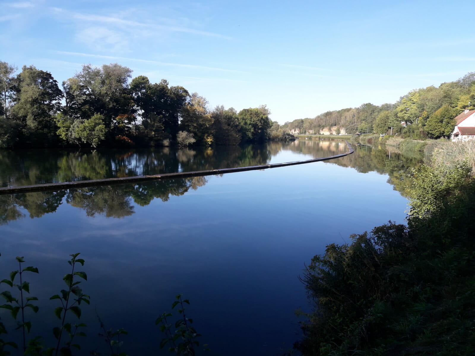 River trees blue sky