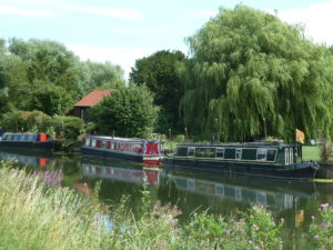 Along the river Cam