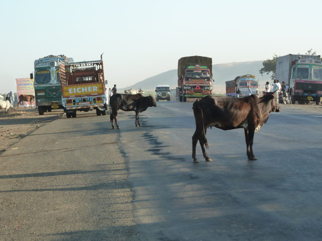 Chaotic Indian roads