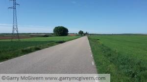 Lush green farmland Spain